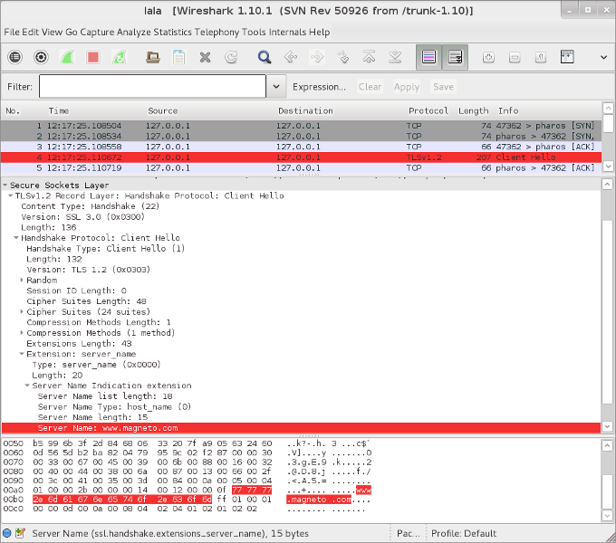 SNI wireshark screenshot